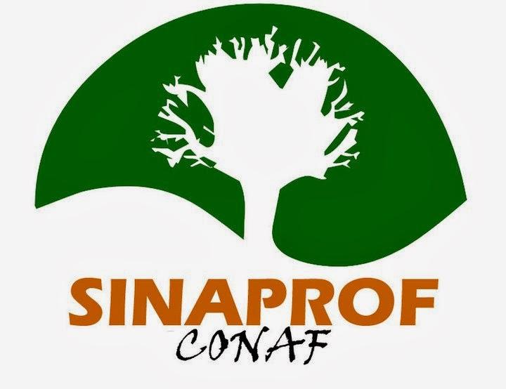 SINAPROF