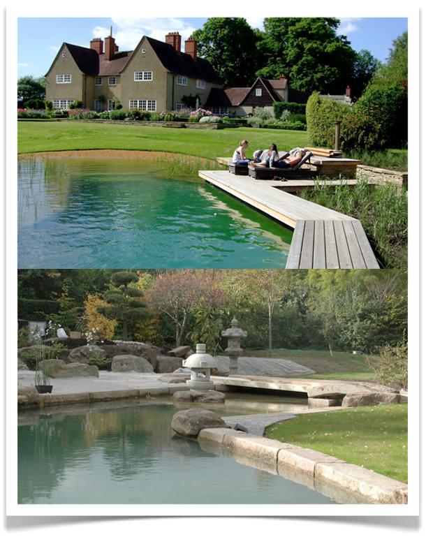10 Rooms Yay Or Nay Natural Swimming Pools