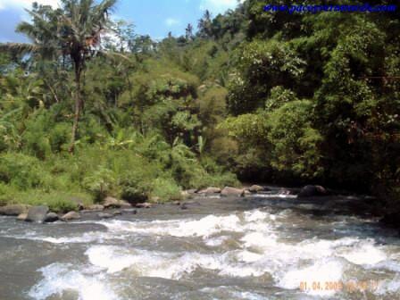 Rafting en Ayung River