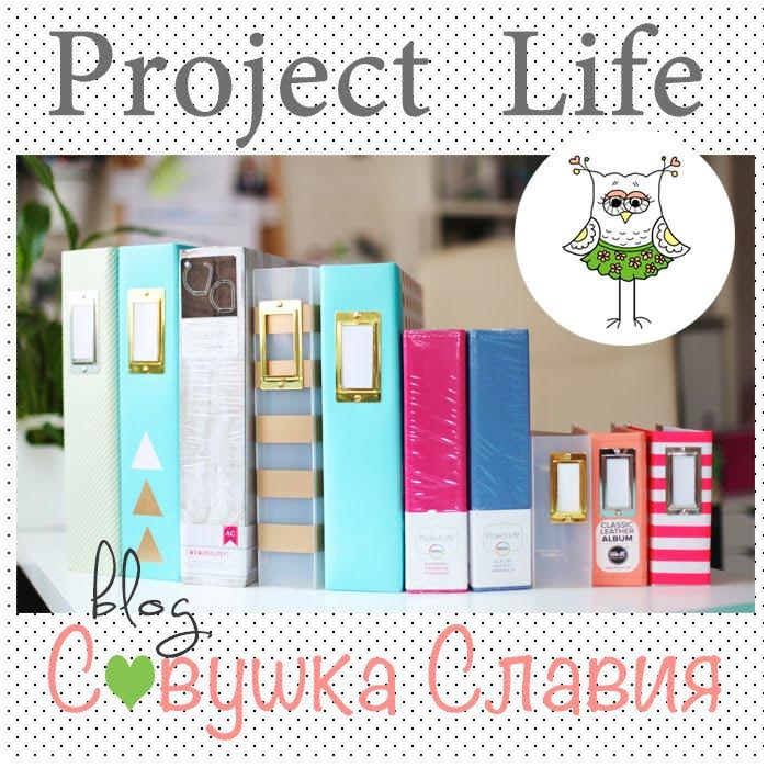 проект PL 2015