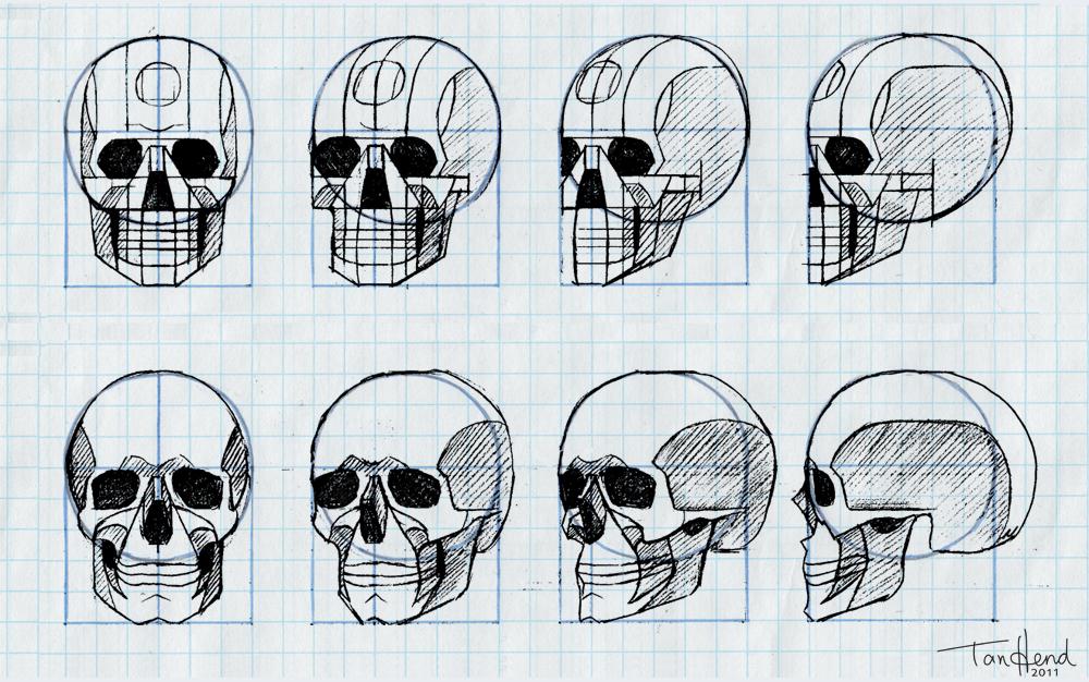 Tania Henderson: Graph paper skulls