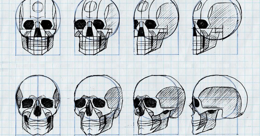 Tania Henderson Graph Paper Skulls