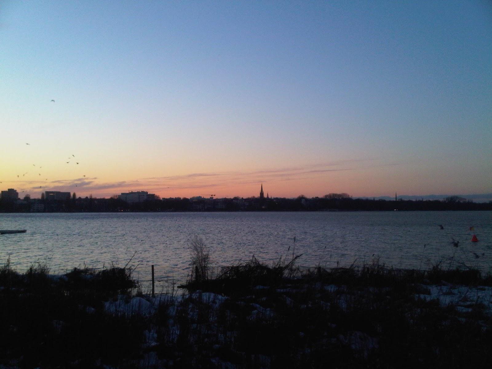 Blick bei Sonnenuntergang über die Alster. Büsche im Vordergrund, Wasser, Silhuette eines Kirchturmes.