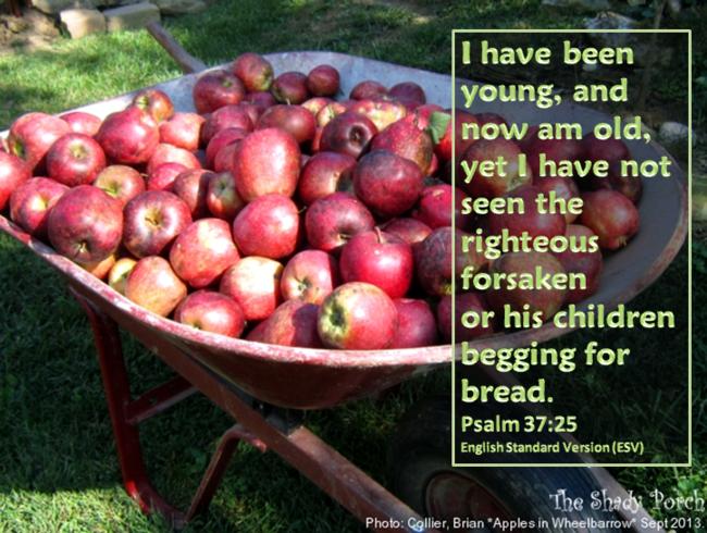 #Bible #scripture #Psalm #Faith