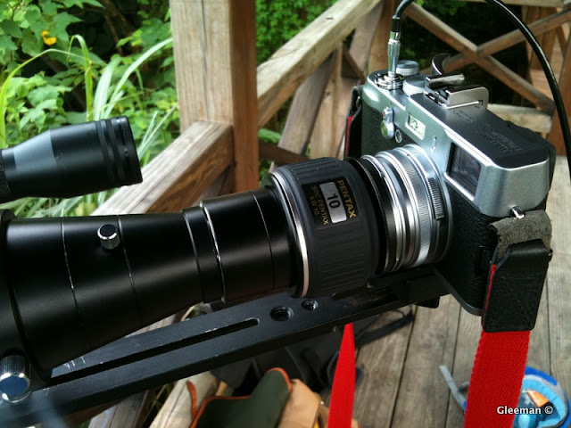 Digiscoping with Fujifilm X100