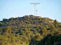 El Turó de la Senyera, punt culminant del Serrat de l'Oca, vist des del camí de Cal Feliu