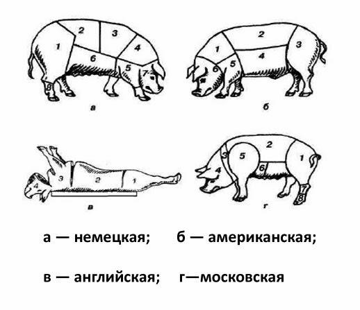 Разделка свиньи в разных