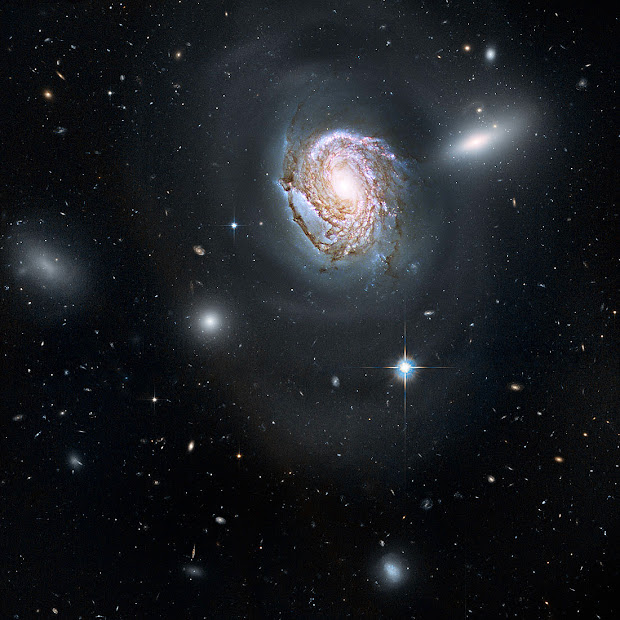 Hubble view of Spiral Galaxy NGC 4911 in the Coma Cluster!