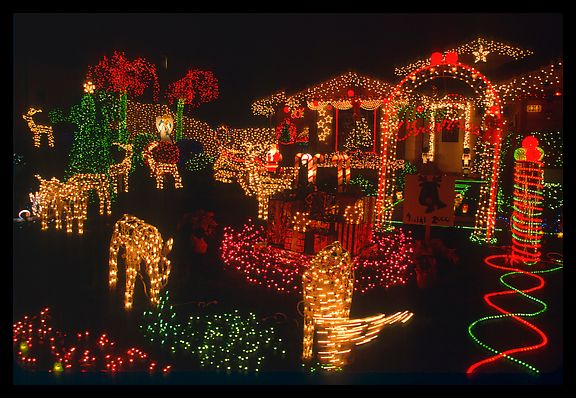 The Bloomin' Couch: Pretty Christmas Lights!