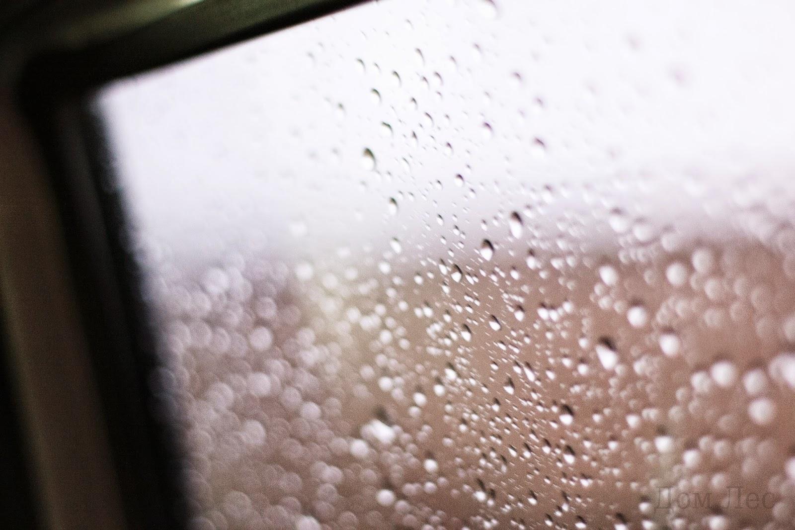 Готовый коллаж на тему осенний дождь картинки