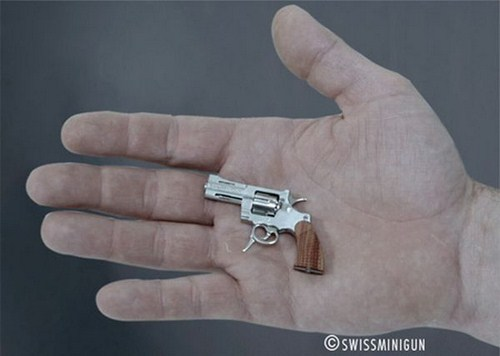 World's Smallest Gun in The World Seen On www.coolpicturegallery.us