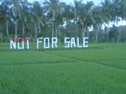 sawah not for sale