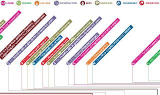 Cronología de la evolución humana