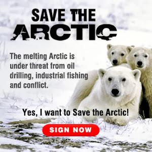 Proteggi l'Artico!