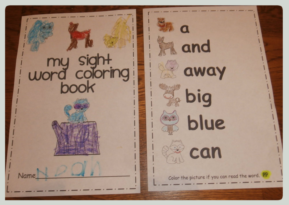 primer as pre Noah I  used the booklet pictures  for word  i sight coloring loved the see book