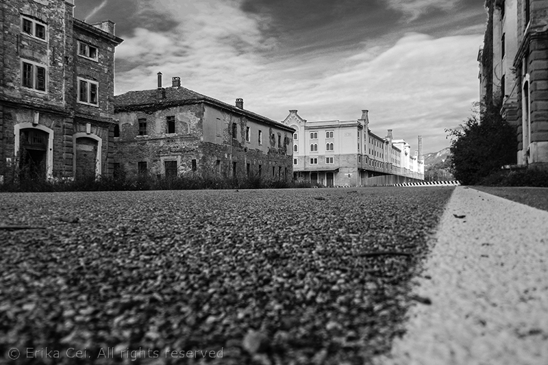 Trieste Porto Vecchio pavimento