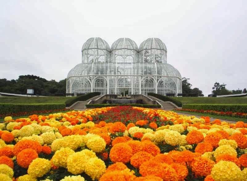 ipe de jardim botânico:Jardim Botânico