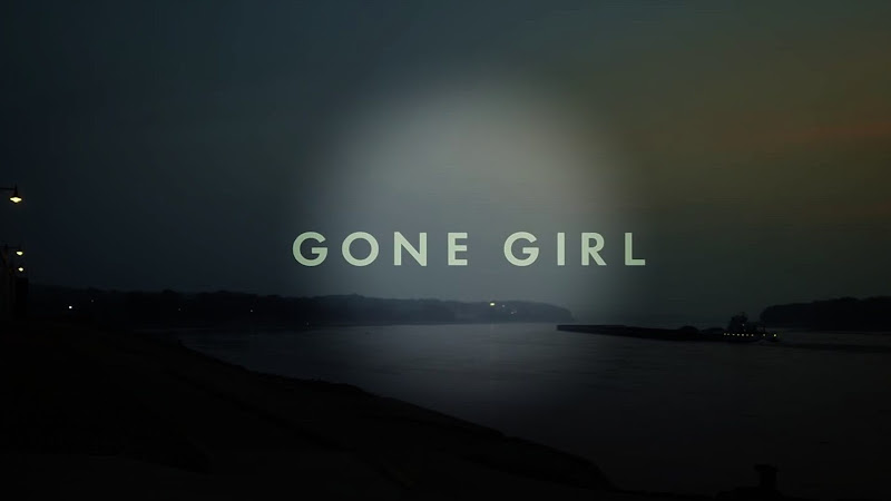 Film Gone Girl