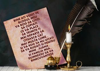 BINE ATI VENIT PE BLOGUL MEU