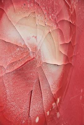 peinture à la caséine_grand format_craquelures et pigments