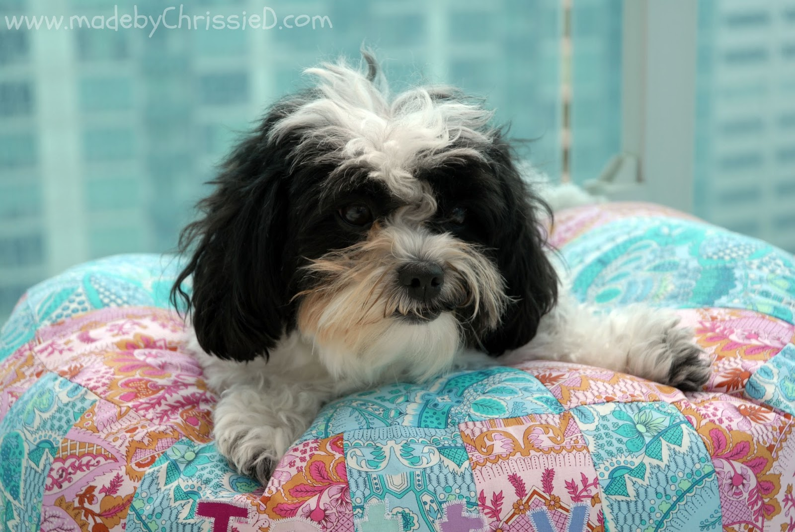 Lhasa Apso Fabric Panel Fabric Cushion Craft Quilting Panel