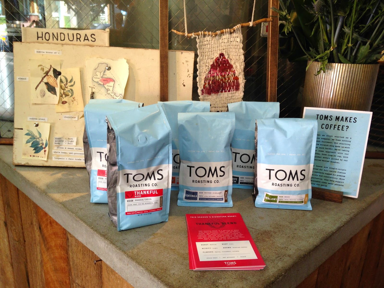 TOMS Roasting Co. Coffee Shop Venice - Hello, Handbag