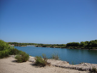 River beach photo - La Devesa - Valencia - Spain