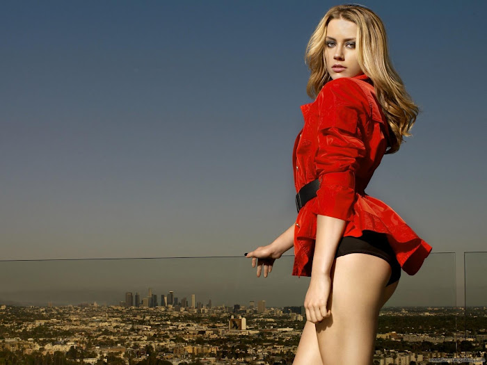 Amber Heard HD Wallpaper -04