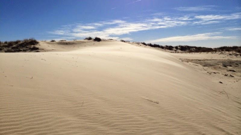 Monahans Sandhills State Park i Texas