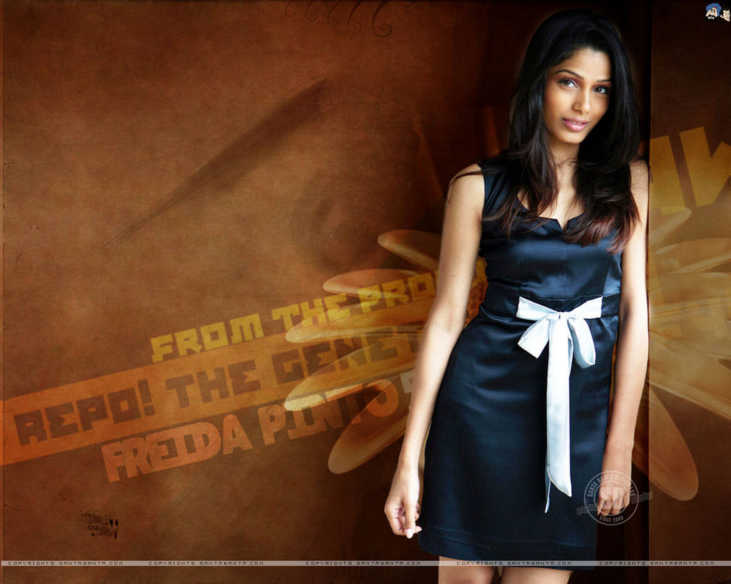 Freida Pinto New Wallpapers 2012
