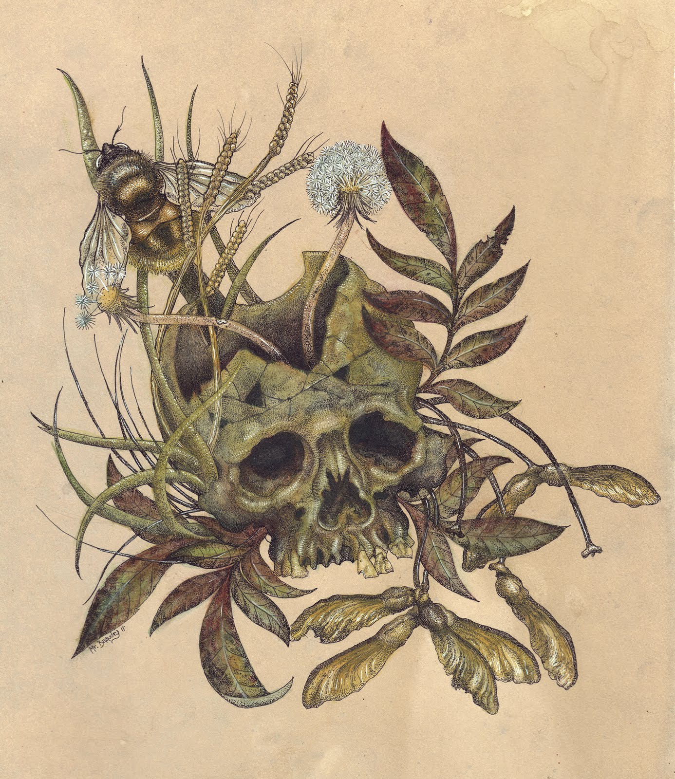metaphor in the death of the moth The death of the moth essaysthe death of the moth, written by virginia woolf, explains the brief life of a moth corresponding with the true nature of life and death.