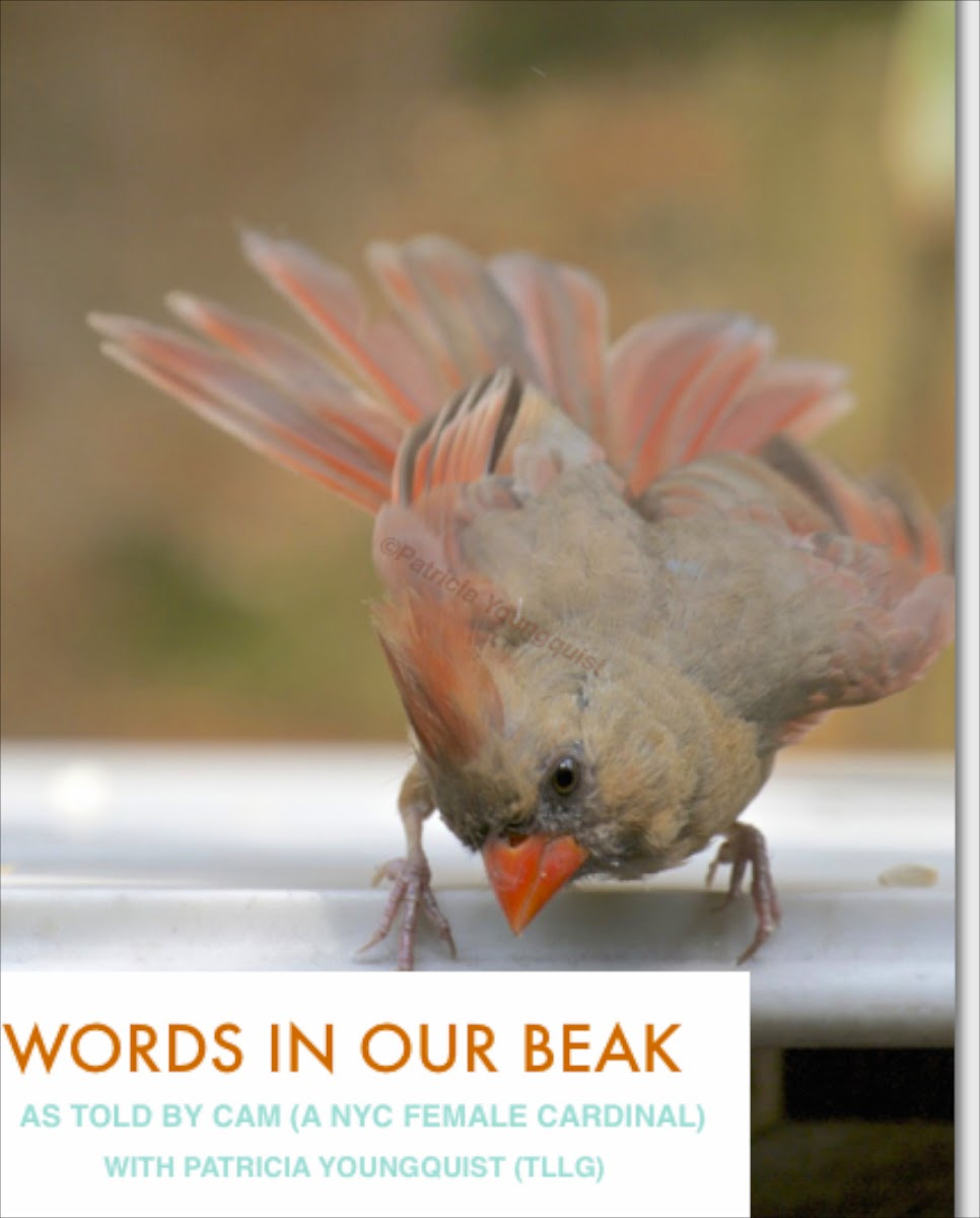 Words In Our Beak's goal is to open readers to a simple understanding of the winged world and their environment. Set in a rooftop urban garden in New York City, my story is told in the voice of Cam, a female cardinal, who visits it. Words In Our Beak is directed to children and adults who are curious about birds, and want to learn about them from a unique perspective. The book includes hundreds of images of flora and fauna, links to movies, as well as to informative narratives that have been created by the author.  Now in Apple's iBooks store @ https://itunes.apple.com/us/book/words-in-our-beak/id1010889086?mt=11