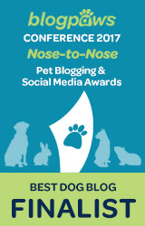 Best Dog Blog Finalist 2017