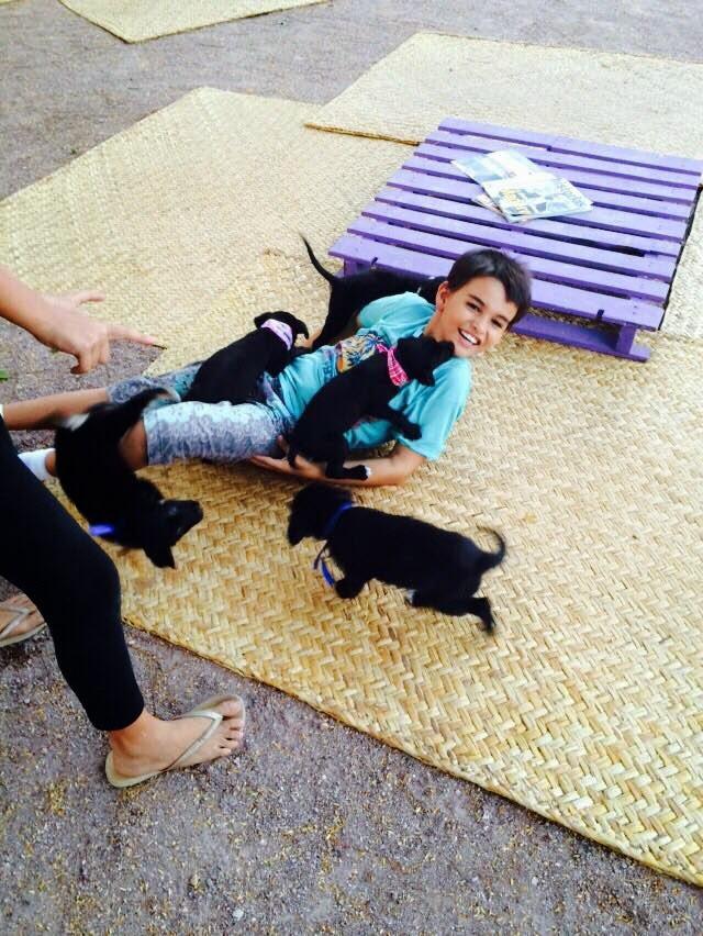 Perritos en adopcion Puerto Vallarta