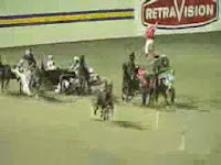 at yarışında kazalar