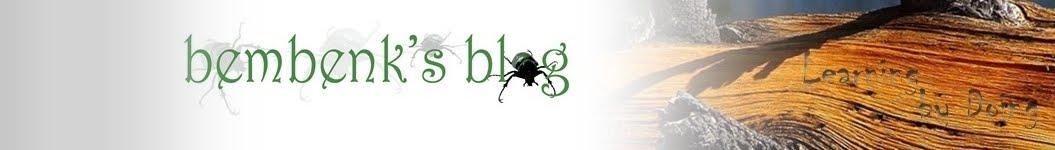 Bembenks Blog