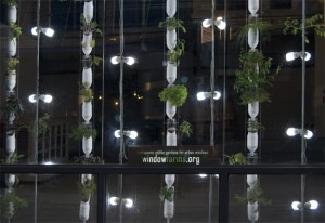 Huerta vertical con botellas y led