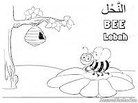 Mewarnai Binatang Lebah Dalam Surah Annahl