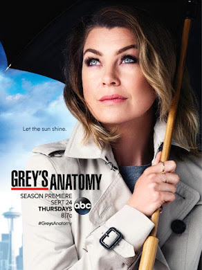 Greys Anatomy – 13X23 temporada 13 capitulo 23