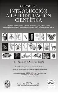 Curso de introducción a la ilustración cientifica