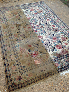 Cambridge rug flood kitty
