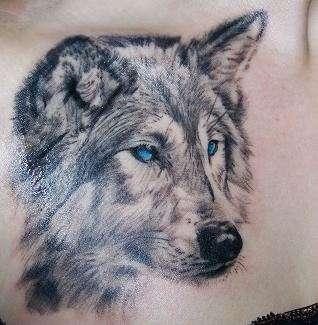 tatuagens de lobo wolf tattoos tattoos my