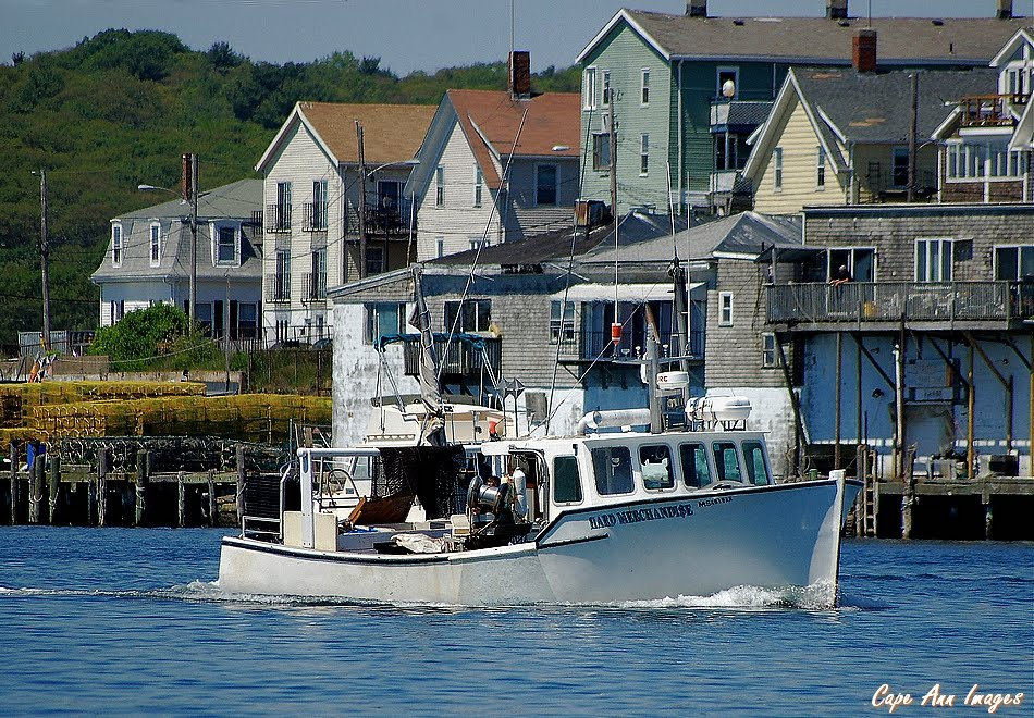 Tuna Boat Hard Merchandise Specs.html   Car Review, Specs, Price and ...