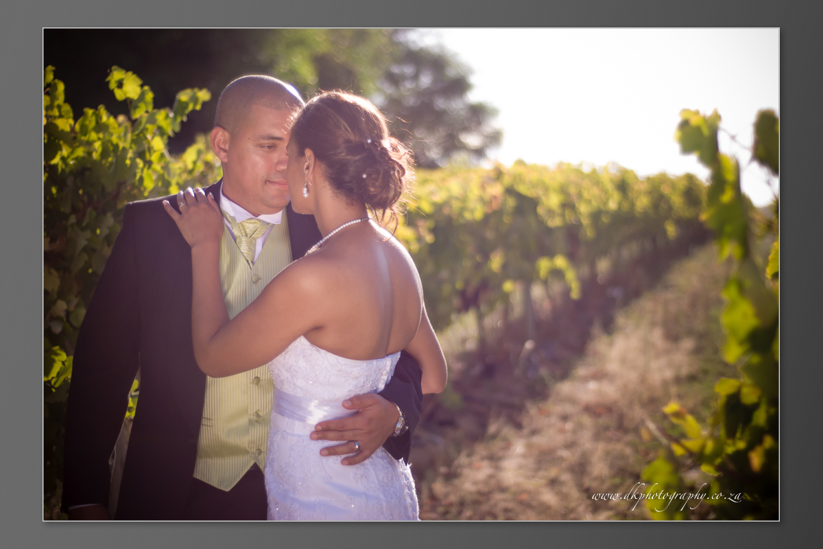 DK Photography DVD+slideshow-372 Cleo & Heinrich's Wedding in D'Aria, Durbanville  Cape Town Wedding photographer