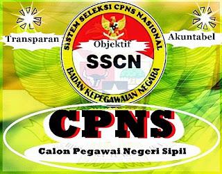 http://www.pendaftaranonline.web.id/2015/05/pendaftaran-online-cpns.html