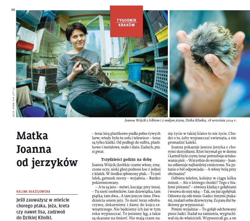 Joanna Wojcik, Tygodnik Powszechny, Jacek Taran, Dzika Klinika