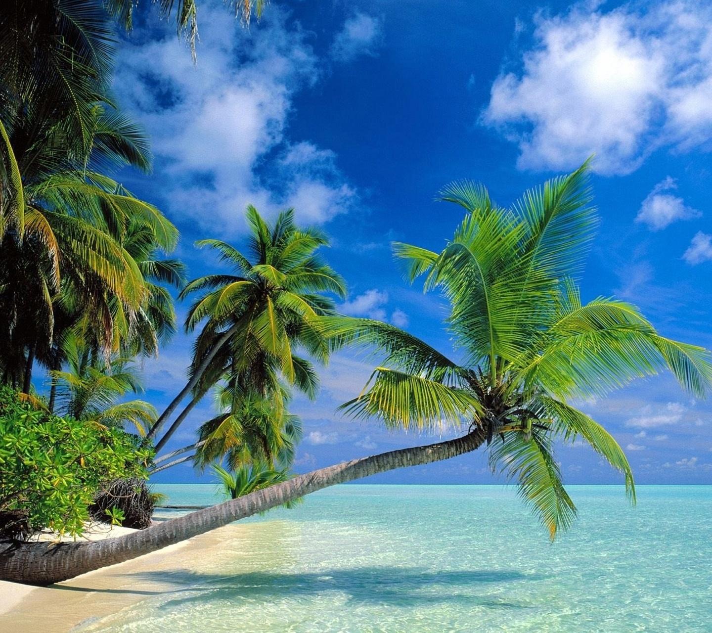 http://1.bp.blogspot.com/-z1ecDdAJ4Bc/UCQo_yvZxKI/AAAAAAAACTk/zZ-fPv7sPlk/s1600/amazing_beach.jpg