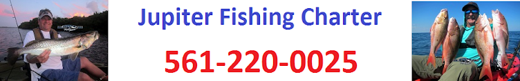 Jupiter Fishing Charter 561-220-0025