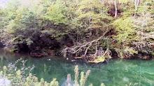 Coidamos o noso río
