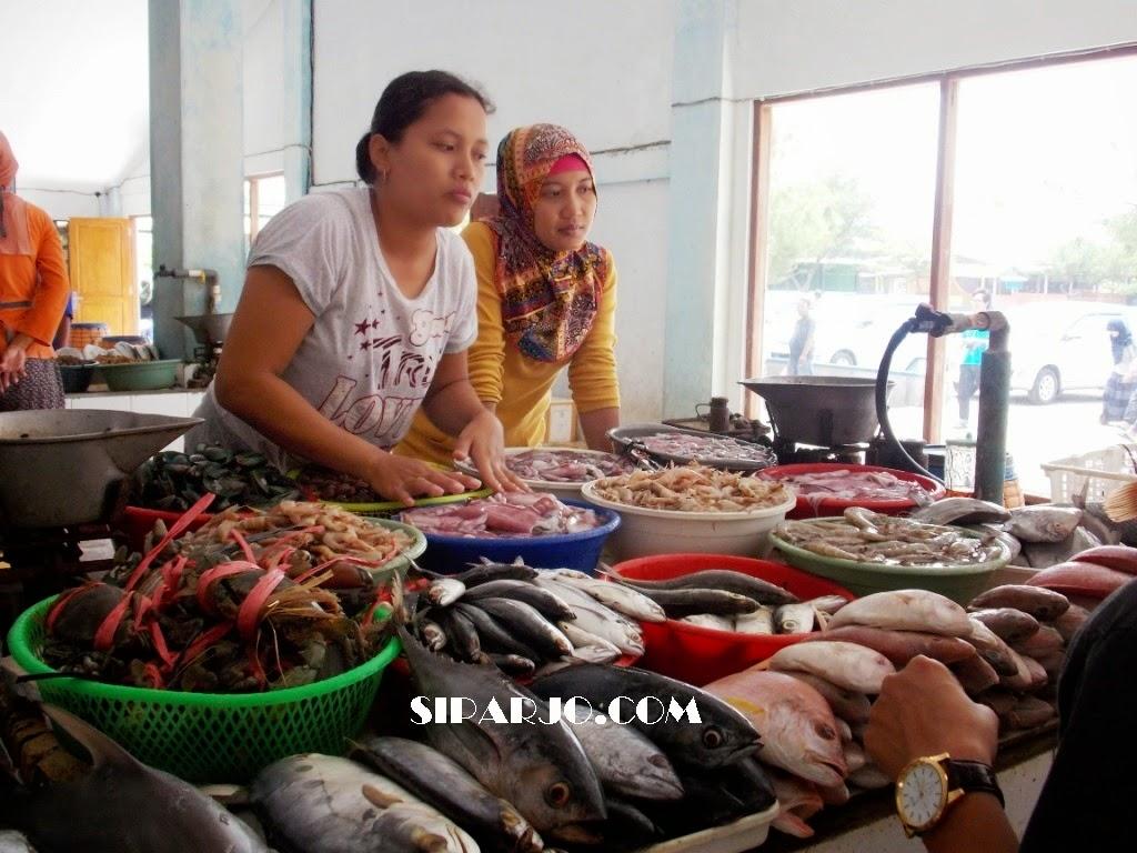 berbagai jenis ikan di pasar ikan depok